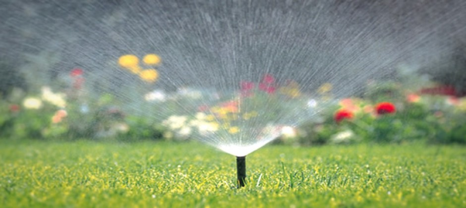 Garden Watering System >> Lawn Landscape and Garden Spray Irrigation Sprinkler Systems